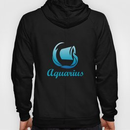 Aquarius Air Sign Graphic Zodiac Birthday Gift Idea Horoscope Design Hoody