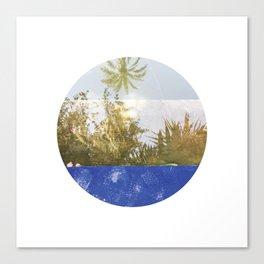 #229 — Le Jardin Majorelle — Marrakech Canvas Print