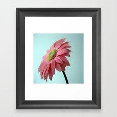 soft and gentle Framed Art Print