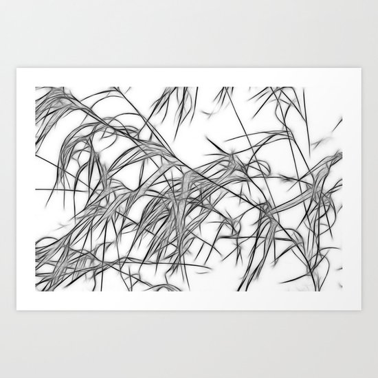 Winter Grasses II Art Print