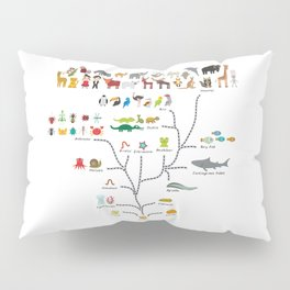 Evolution scale from unicellular organism to mammals. Evolution in biology, scheme evolution Pillow Sham