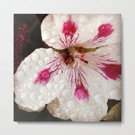 Flowers in the Summer Rain Metal Print