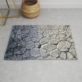 Nature's building blocks Rug