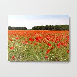 Normandy Poppies Metal Print