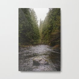 Salmon River II Metal Print