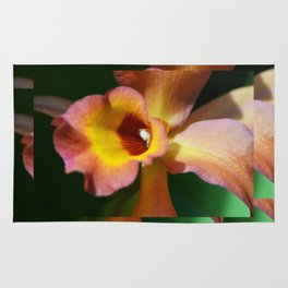 Floral Art - Intimate Orchid 3 - Sharon Cummings Rug
