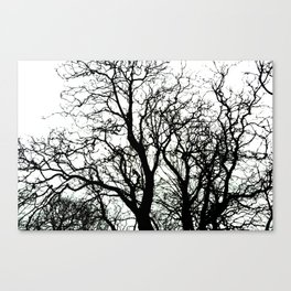 Left Canvas Print