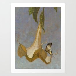 Angel's Trumpet and Swallowtail Butterfly Art Print