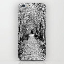Black and White Path iPhone Skin