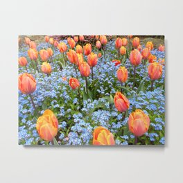 Tulips and Forget Me Nots Metal Print