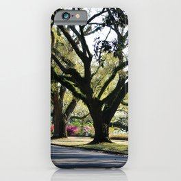 Oaks And Azaleas iPhone Case