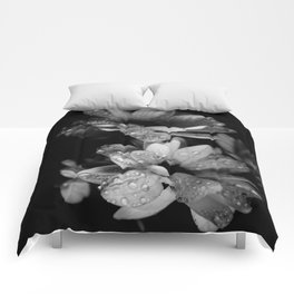 Flower and drops. Black and white. Comforters