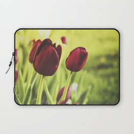 When Spring Was Here Laptop Sleeve