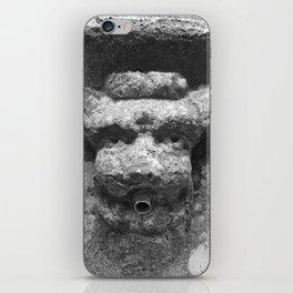 Fountain iPhone Skin