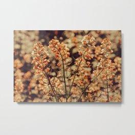 Pastel Field of Flowers Metal Print
