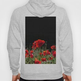 Red Poppies in bright sunlight Hoody