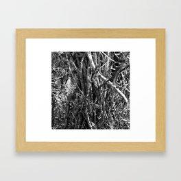 Interwoven. Framed Art Print