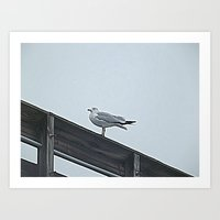 Mean Mug From A Bird Art Print