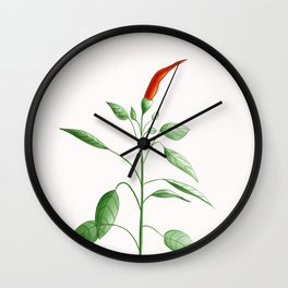 Little Hot Chili Pepper Plant Wall Clock