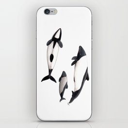 Commerson´s dolphins iPhone Skin
