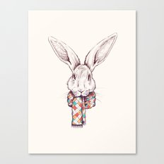 Bunny and scarf Canvas Print