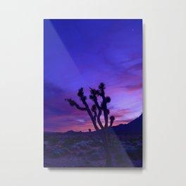 Desert Sunset II - Mormon Mountains Wilderness, Nevada Metal Print