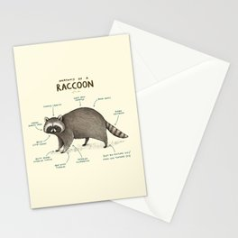 Anatomy of a Raccoon Stationery Cards