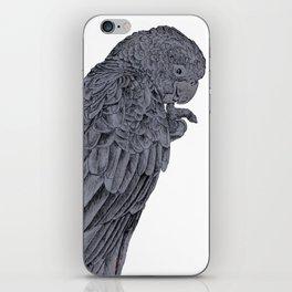 Nibbling Black Cockatoo iPhone Skin