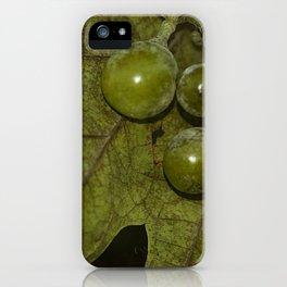 Grapevine iPhone Case