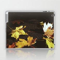 Down the path Laptop & iPad Skin