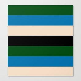 Color Stripe _003 Canvas Print