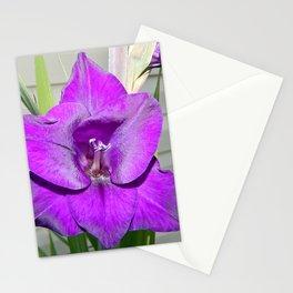 Purple Gladiola Stationery Cards