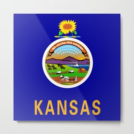 Kansas State Flag Metal Print