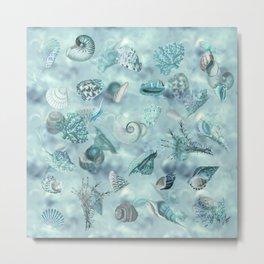 Sea shells Wonder 2 Metal Print
