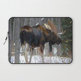 Massive male moose on the loose in Jasper National Park Laptop Sleeve