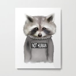 Raccoon Not human Metal Print