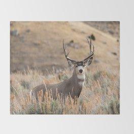 Mule Deer #01 Throw Blanket