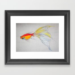 Goldfish Pond (close up#1) Framed Art Print