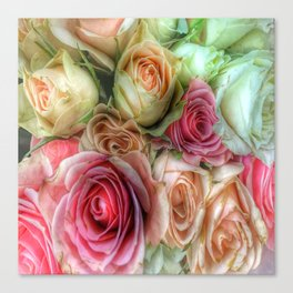 Roses - Pink and Cream Canvas Print