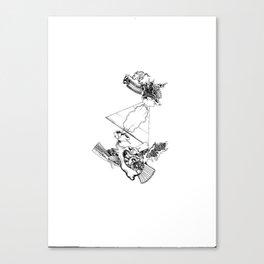 intergalactic flight Canvas Print