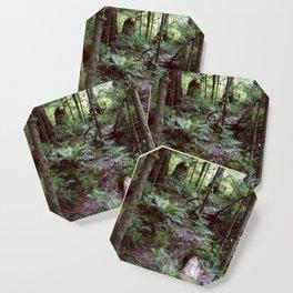 Vancouver Island Rainforest Coaster