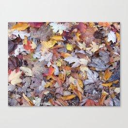 leaf litter menagerie Canvas Print