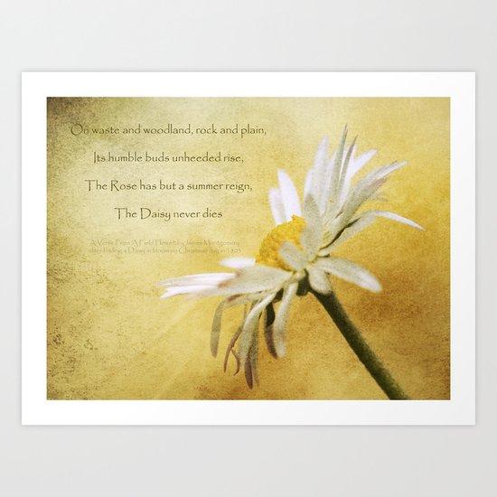 Daisy Poem Art Print