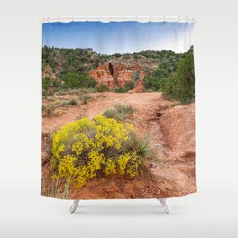 Palo Duro Canyon Cave and Wildflowers Shower Curtain