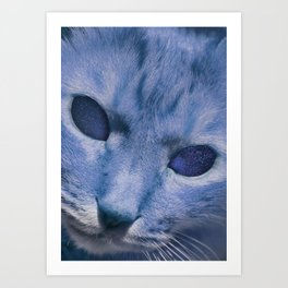 Space Cat's Eye Art Print