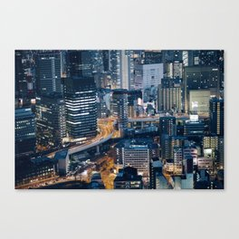 Asia 25 Canvas Print