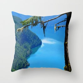 Nature's Window - Lake Slocan, BC, Canada Throw Pillow