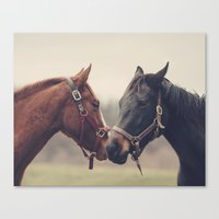 horses Canvas Prints featuring Horses  by Laura Ruth