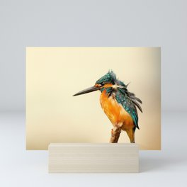 Kingfisher Bird Mini Art Print