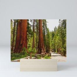 Giant Sequoia Trees, Yosemite National Park Mini Art Print